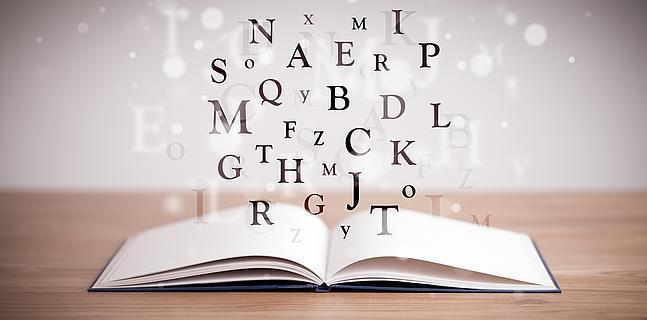Glosario de Términos par un Manual de Procedimientos