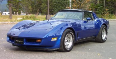 Corvette1981