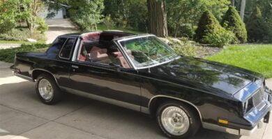 Cutlass1983