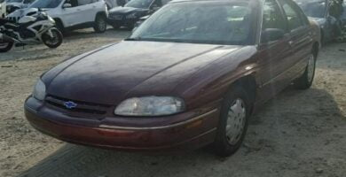 Manual de Usuario CHEVROLET Lumina 1996 en PDF Gratis