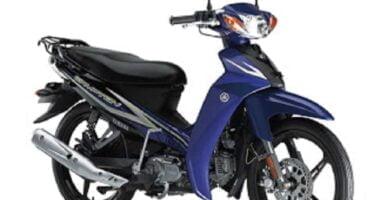 Manual en Español Yamaha T110C 2013 de Usuario PDF GRATIS