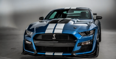 Manual en Español FORD SHELBY 2020 de Usuario PDF GRATIS