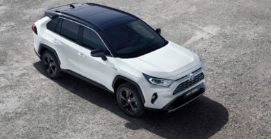 Manual Toyota RAV4 Hybrid 2019 de Usuario