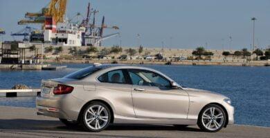 Manual BMW 228i Coupe 2014 de Usuario