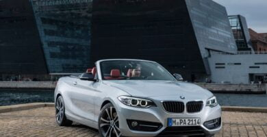 Manual BMW 2 Series Convertible 2015 de Usuario