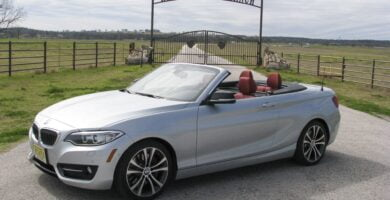 Manual BMW 228i xDrive Convertible 2015 de Usuario