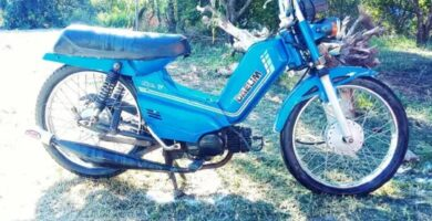 Manual Moto DAELIM liberty 50 CC 1995 de Usuario PDF GRATIS